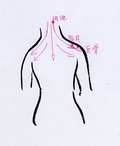 颈背部砭石刮痧的手法