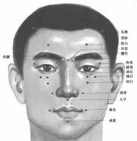 面部刮痧穴位图 脸部
